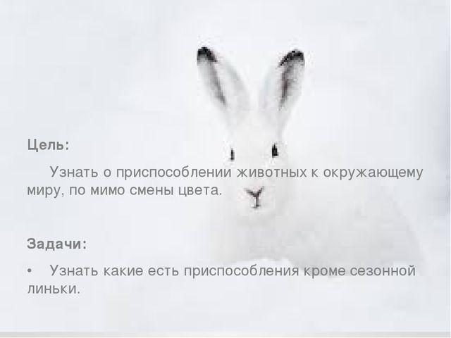 Цель: Узнать о приспособлении животных к окружающему миру, по мимо смены цв...
