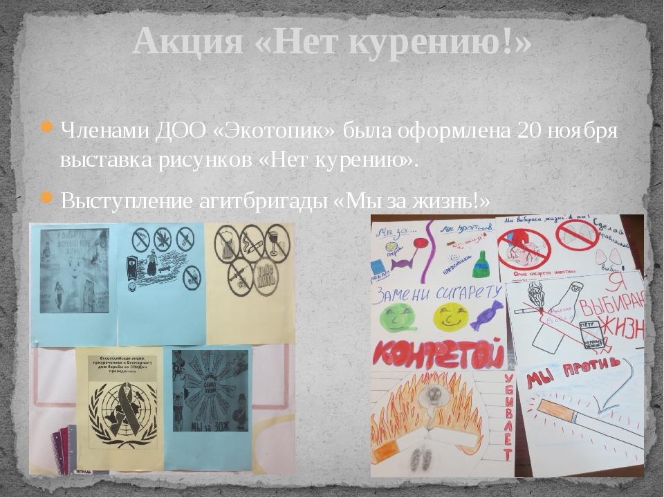 Акция «Нет курению!» Членами ДОО «Экотопик» была оформлена 20 ноября выставка...