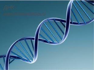 ДНК-нанотехнологии