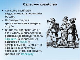 Сельское хозяйство Сельское хозяйство – ведущая отрасль экономики России. Наб