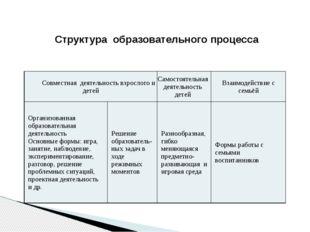 Структура образовательного процесса Совместнаядеятельность взрослого и детей