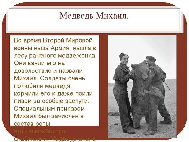 Медведь Михаил. Во время Второй Мировой войны наша Армия нашла в лесу раненог...