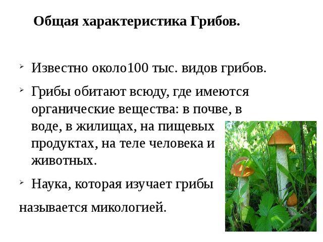 Общая характеристика Грибов. Известно около100 тыс. видов грибов. Грибы обит...