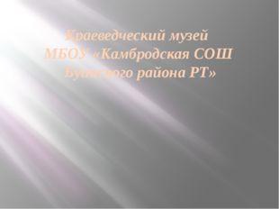 Краеведческий музей МБОУ «Камбродская СОШ Буинского района РТ»