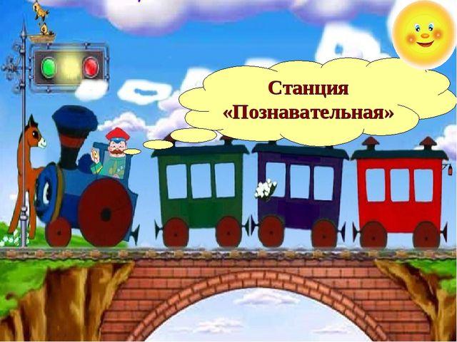Станция «Познавательная»