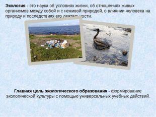 Главная цель экологического образования - формирование экологической культур