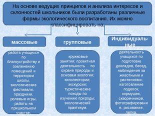 На основе ведущих принципов и анализа интересов и склонностей школьников был