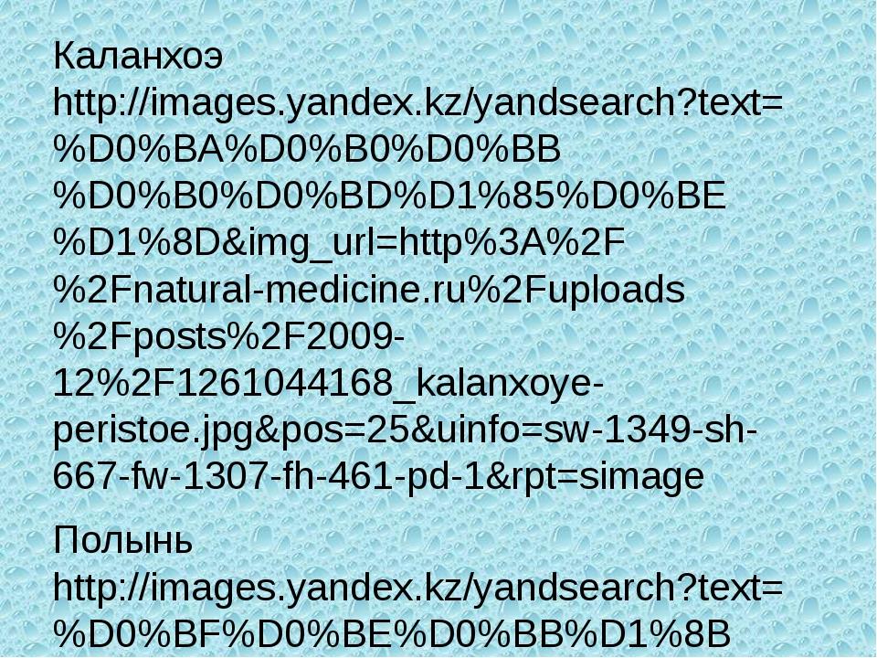 Каланхоэ http://images.yandex.kz/yandsearch?text=%D0%BA%D0%B0%D0%BB%D0%B0%D0%...