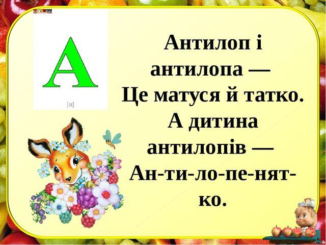 Антилоп і антилопа — Це матуся й татко. А дитина антилопів — Ан-ти-ло-пе-нят-...