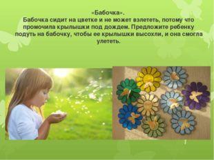 «Бабочка». Бабочка сидит на цветке и не может взлететь, потому что промочила