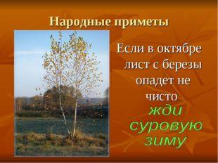 Народные приметы Если в октябре лист с березы опадет не чисто