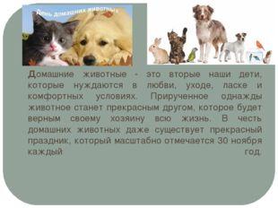 Домашние животные - это вторые наши дети, которые нуждаются в любви, уходе, л