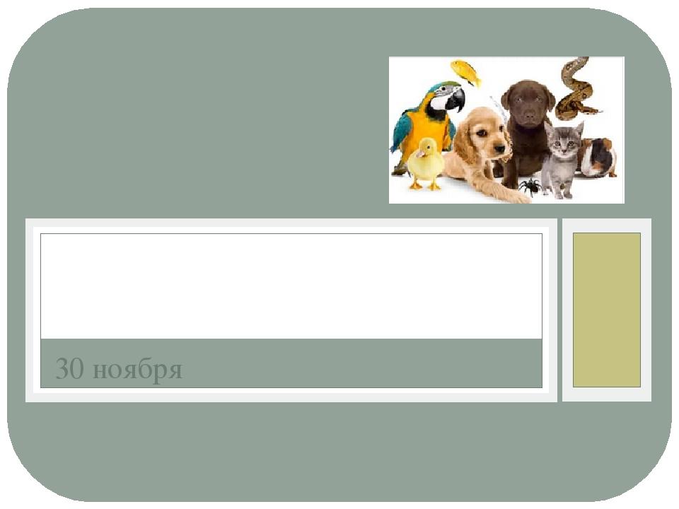 30 ноября День домашних животных