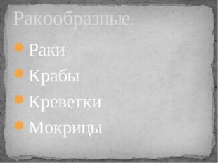 Раки Крабы Креветки Мокрицы Ракообразные: