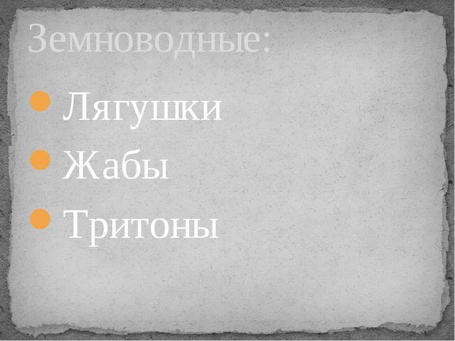 Лягушки Жабы Тритоны Земноводные:
