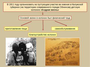 В 1911году организовать на пустующем участке ее имения в Калужской губернии