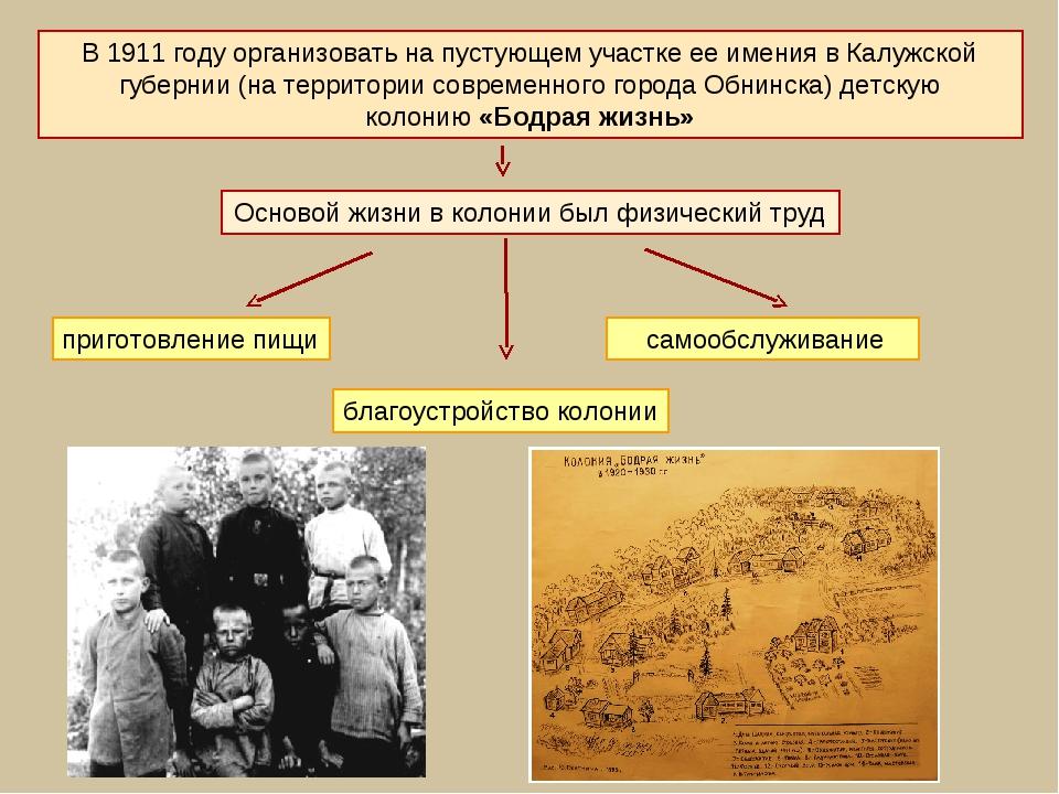 В 1911году организовать на пустующем участке ее имения в Калужской губернии...