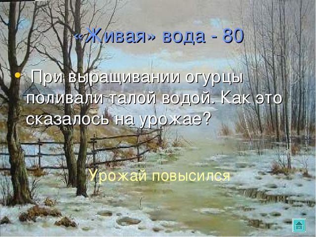 «Живая» вода - 80 При выращивании огурцы поливали талой водой. Как это сказал...