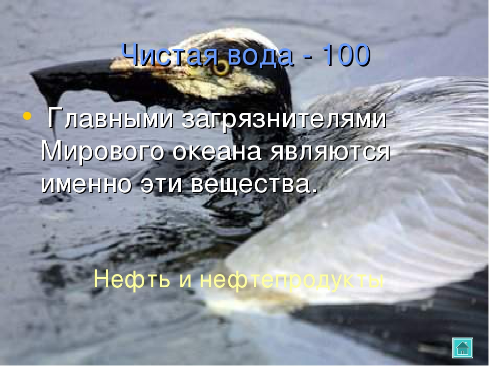 Чистая вода - 100 Главными загрязнителями Мирового океана являются именно эти...