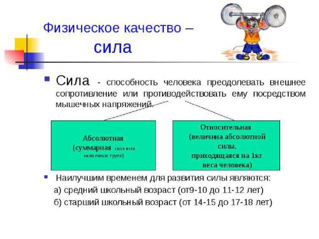 Материал по физкультуре на тему Реферат по физкультуре  Физические качества реферат