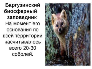Баргузинский биосферный заповедник На момент его основания по всей территории