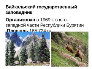 Байкальский государственный заповедник Организованв 1969 г. в юго-западной ч