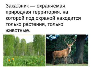 Зака́зник — охраняемая природная территория, на которой под охраной находится