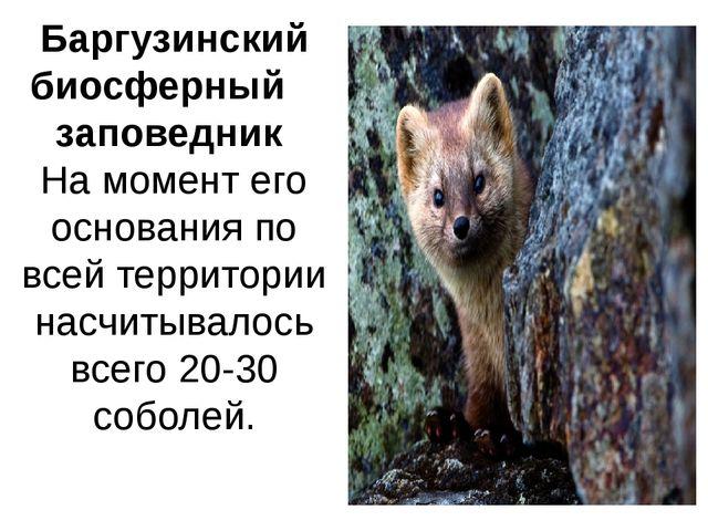 Баргузинский биосферный заповедник На момент его основания по всей территории...