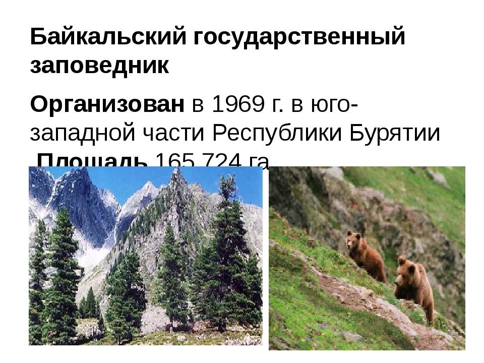Байкальский государственный заповедник Организованв 1969 г. в юго-западной ч...