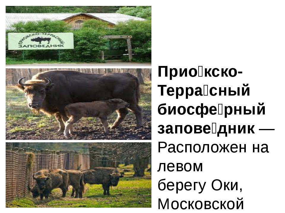 Прио́кско-Терра́сный биосфе́рный запове́дник—Расположен на левом берегуОки...