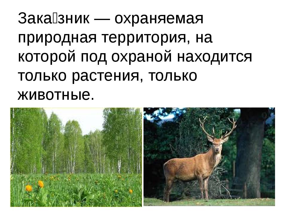 Зака́зник — охраняемая природная территория, на которой под охраной находится...