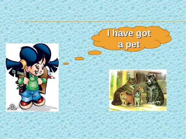 I have got a pet