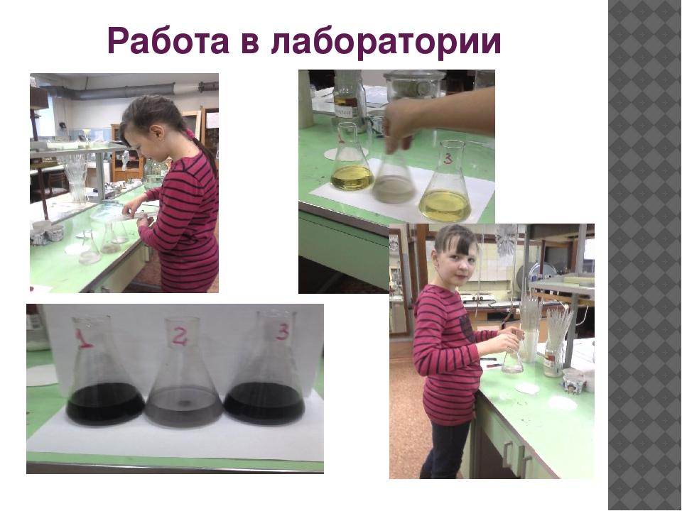 Работа в лаборатории