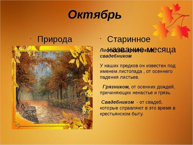 Октябрь Природа Старинное название месяца Листопад, грязником, свадебником У...
