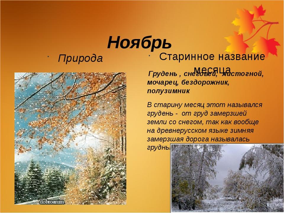 Ноябрь Природа Старинное название месяца Грудень , снеговей, листогной, моча...