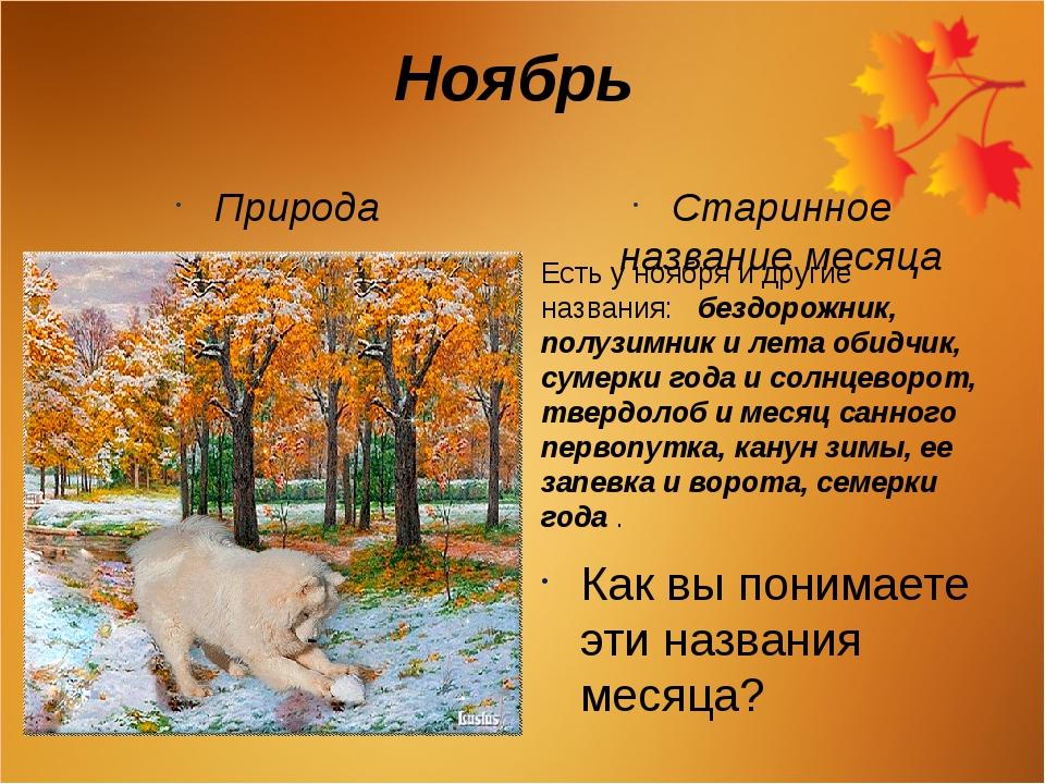 Ноябрь Природа Старинное название месяца Есть у ноября и другие названия: без...