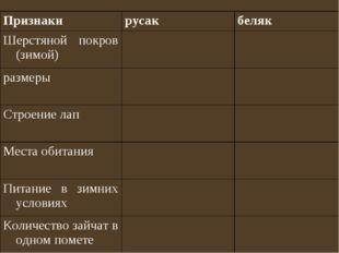 Признакирусакбеляк Шерстяной покров (зимой) размеры Строение лап Мест