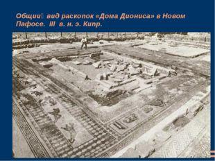 Общий вид раскопок «Дома Диониса» в Новом Пафосе. III в. н. э. Кипр.