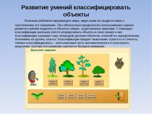 Развитие умений классифицировать объекты Познание ребенком окружающего мира