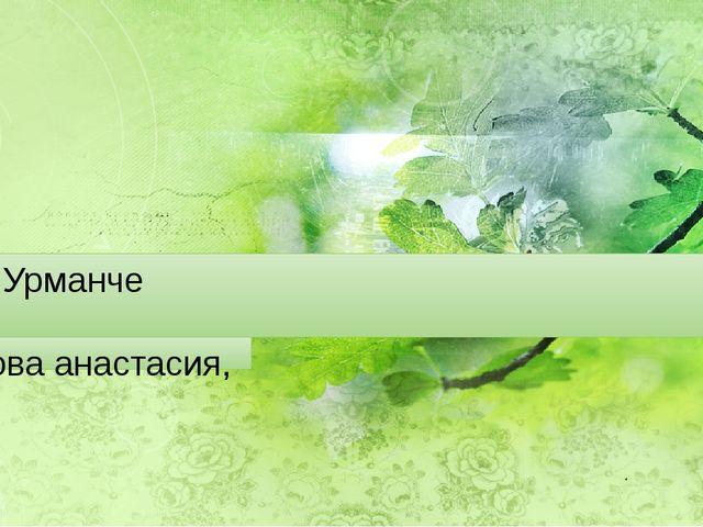 Бакый Урманче Краснова анастасия, 9а