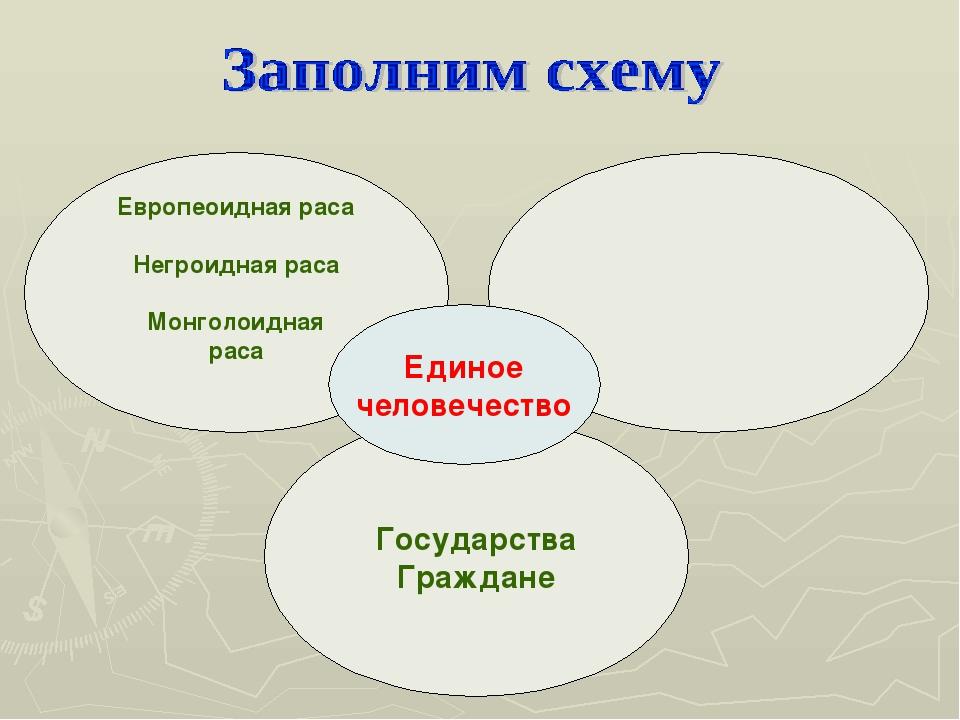 Европеоидная раса Негроидная раса Монголоидная раса Государства Граждане Един...