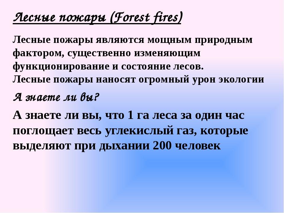 Лесные пожары (Forest fires) Лесные пожары являются мощным природным фактором...