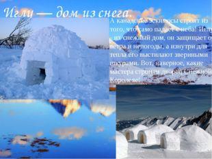 Иглу— дом из снега. А канадские эскимосы строят из того, что само падает с н