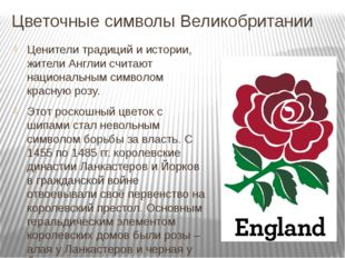 Цветочные символы Великобритании Ценители традиций и истории, жители Англии с