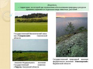 Заказник — территория, на которой при ограничении использовании природных рес