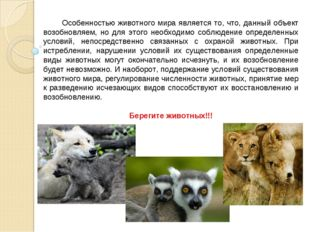 Особенностью животного мира является то, что, данный объект возобновляем, но