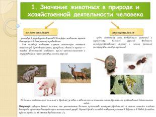 - участвуя в круговороте веществ в биосфере, животные играют важную роль в ди