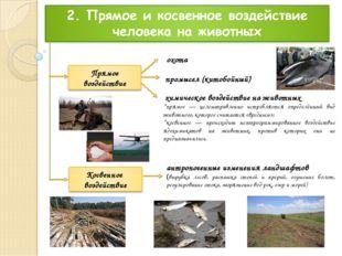 охота антропогенные изменения ландшафтов (вырубка лесов, распашка степей и пр