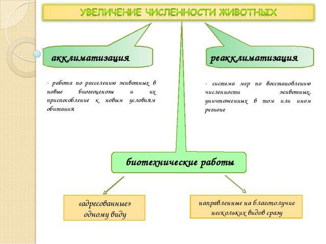 акклиматизация реакклиматизация - работа по расселению животных в новые биоге...