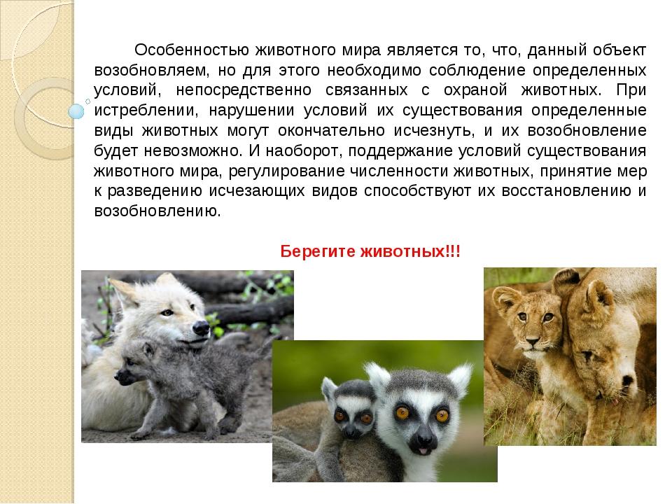 Особенностью животного мира является то, что, данный объект возобновляем, но...